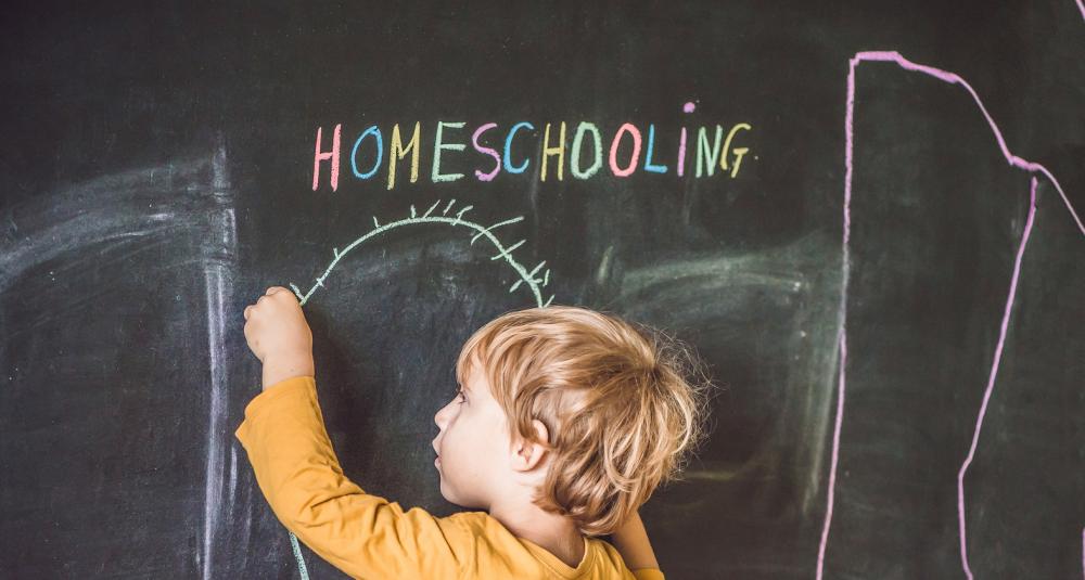 Homeschooling aprovado em mais um estado